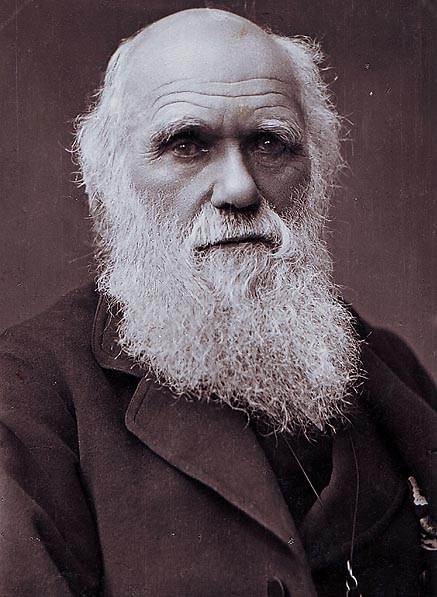 Charles Darwin Photograph by By Herbert Rose Barraud