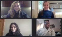 Sustainability Council interns meeting via zoom.
